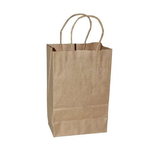 Shopping Bag Kraft Tempo 8x4.75x10 250/ct