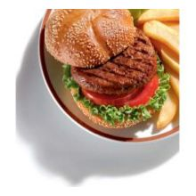 BEEF PATTY THICK-N-JUICY 80/20 4-1 15/LB